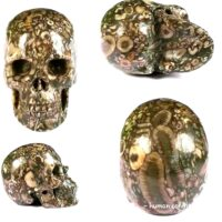 Unique Gemstone Finds